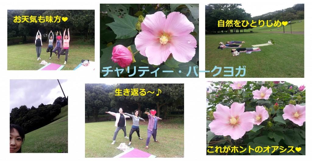 パークヨガ@根岸森林公園
