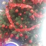 クリスマスに・・・サンタになろうプロジェクト★応募締切★